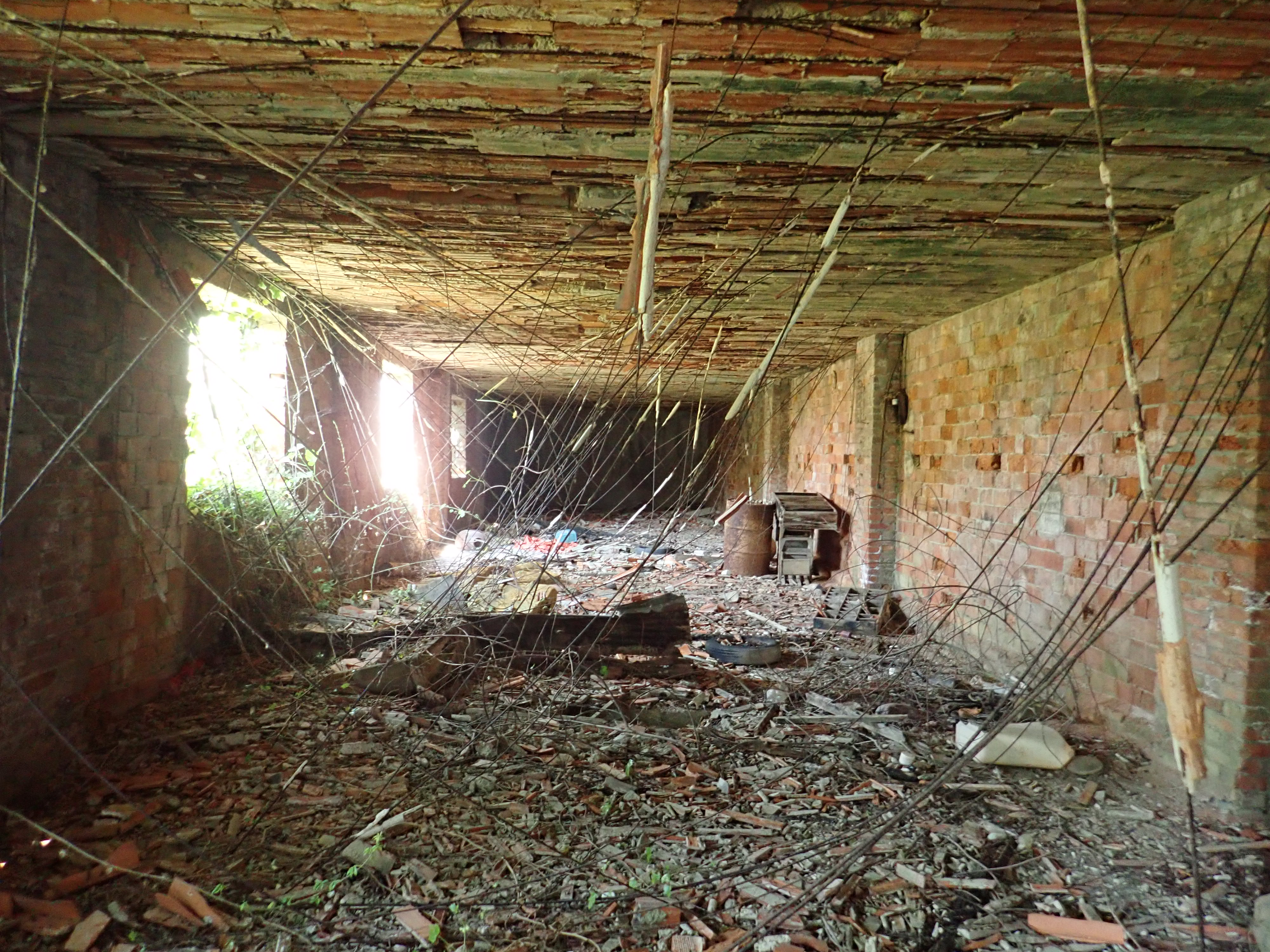luoghi abbandonati versilia