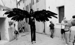 La corvoniera e il corvo